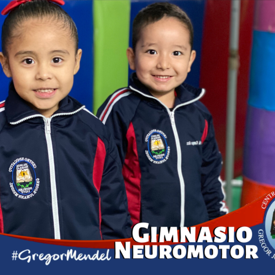 bicultural-education-retos-escuela-en-linea-neuromotor